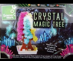 magic paper tree instructions